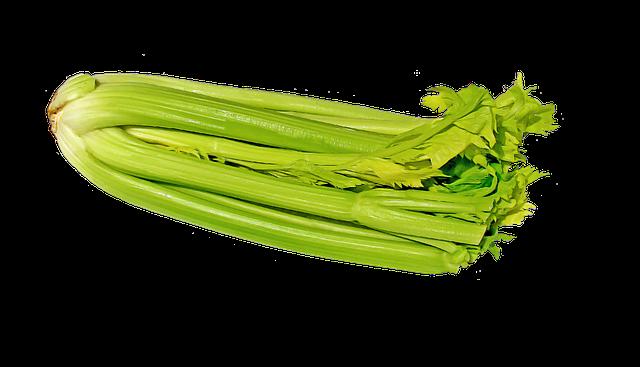 zelený celer